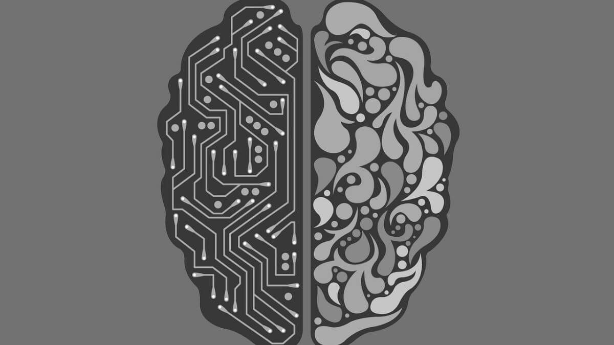 brain divided into computer and human ai